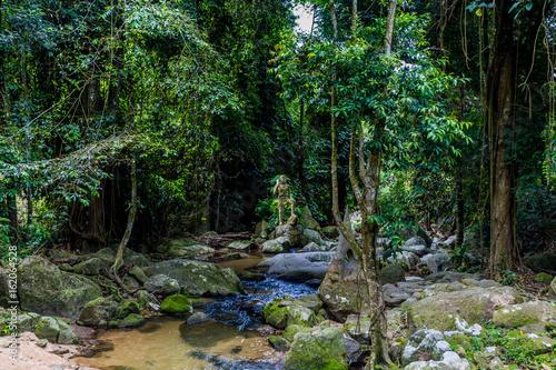 Geheimer Garten Koh Samui Buy This Stock Photo And Explore