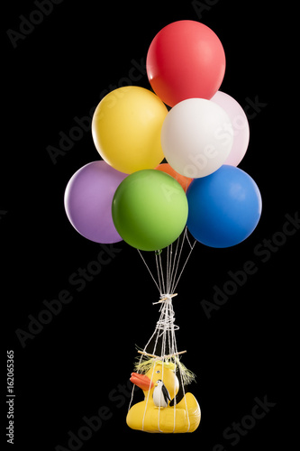 Photo  Duck, with yellow hair like Donald Trump, and penguin suspended from balloons