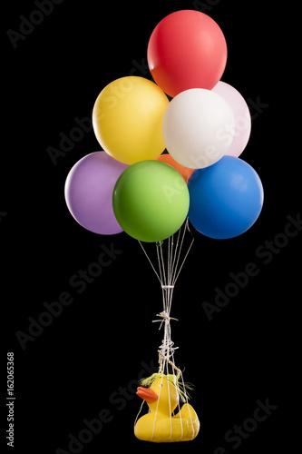 Duck, with yellow hair like Donald, suspended from balloons Poster