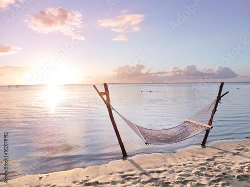 Fotografia  Hammock in the sunset