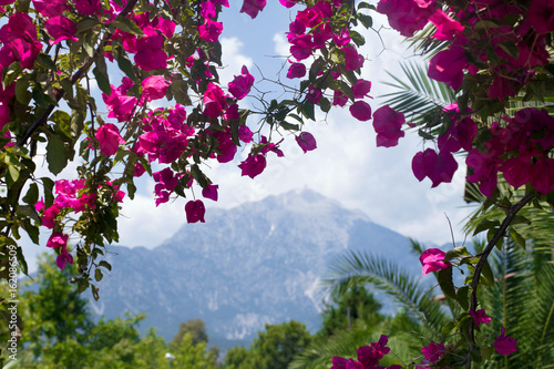 Picturesque view to the mountain throug the natural frame of red ...
