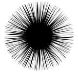 Element abstrakcyjny z liniami promieniowymi. Okrągły kształt w promieniujący sposób - 162101715