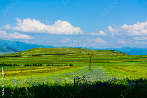 Fotobehang Rijstvelden Amazing landscape with mountains and yellow field flowers, Armenia