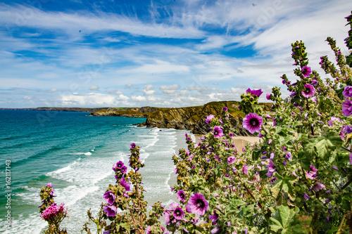 Fototapety, obrazy: Newquay Beach
