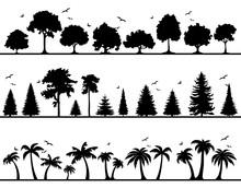 Silhouette Bäume