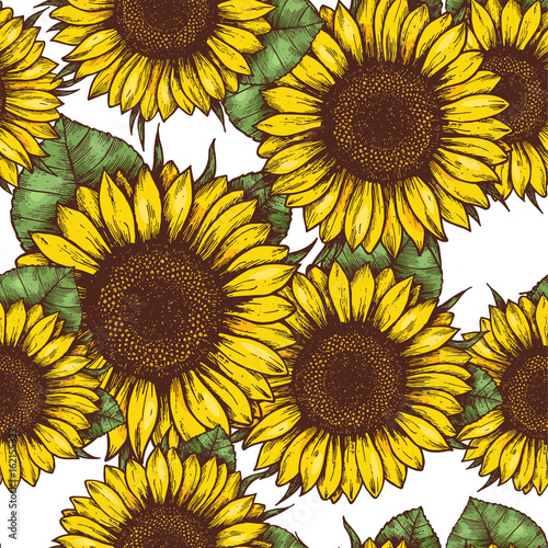 Plakat Ilustracja wzoru słonecznika