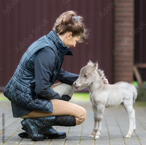 HF NOBLE'S GULLIVER - world's smallest horse and his Owner. Tiny foal measuring just 31 cm tall. American miniature horse.
