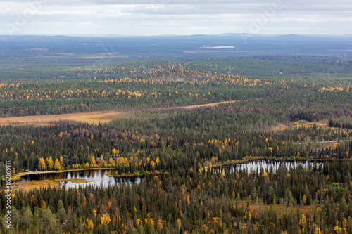 Wall Murals Bali Autumn landscape with forest in Lapland, Finland