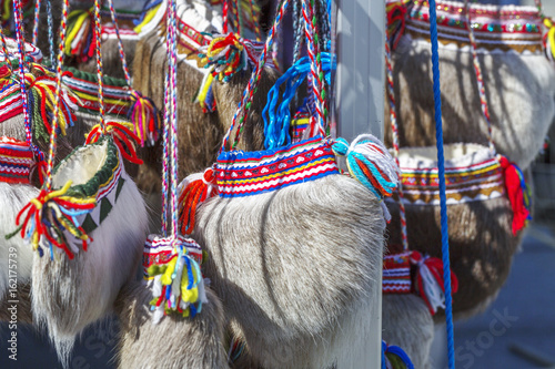 Traditional ethnographic sami bag made of deer fur.