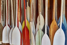 Paddles In Storage