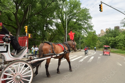 Fototapeta Horse Carriage 7 / On the streets of New York entering the massive Central park.