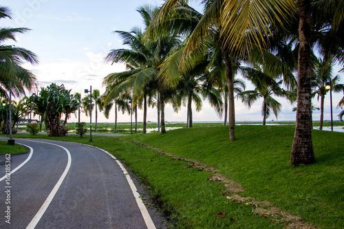 Park, street, bike