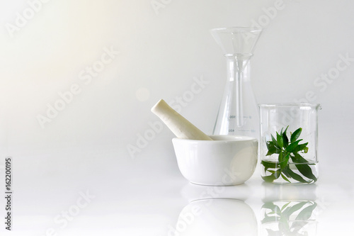 Natural organic botany and scientific glassware, Research and development concept.