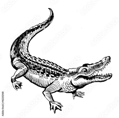 Fotografie, Obraz  Happy crocodile