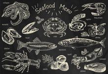Seafood Menu, Octopus, Mussels, Lobster, Trout, Shells, Mackerel, Crab, Oyster, King Prawns, Shrimps, Squid, Salmon, Calamari On Chalkboard Background