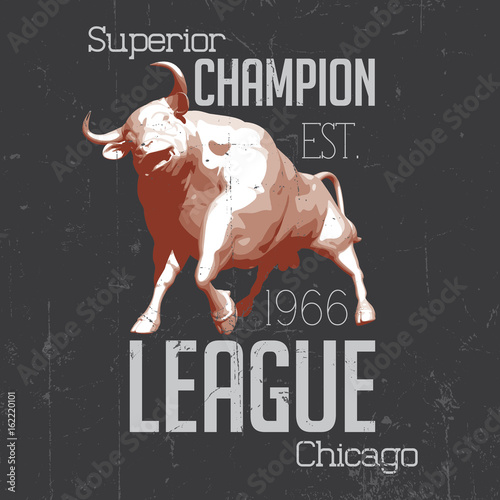 Photo  Superior Chicago Champion Poster