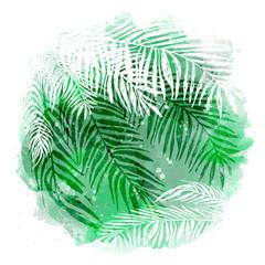 Naklejkatrendy green tropical background, exotic leaves, coconut palm. Vector botanical illustration, elements for design.