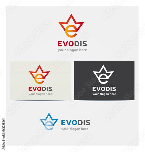 Logo Lettre E Multicolore Icone Couronne Carte De Visite Et Charte Graphique Entreprise Plusieurs Couleurs