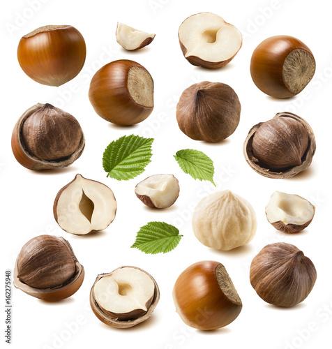 Fotografie, Obraz  Hazelnut nut set isolated on white background