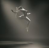 Młoda i piękna balerina To jest ilustracja renderowania 3d. - 162281773