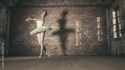 Obrazy na płótnie Canvas Young and beautiful ballerina