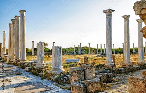 Deurstickers Cyprus Salamis ruins , Cyprus