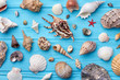 Sea shells collection close up. Decoration from sea shells on painted background.