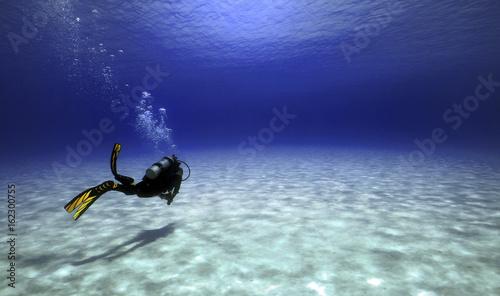 Swimming into Oblivion Canvas-taulu