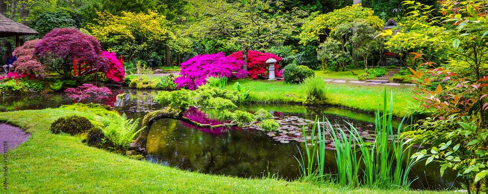 Fototapeta Traditional Japanese Garden.