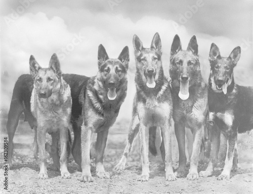 Fotografia  Fall - Gsd - 1935 - Group. Date: 1935