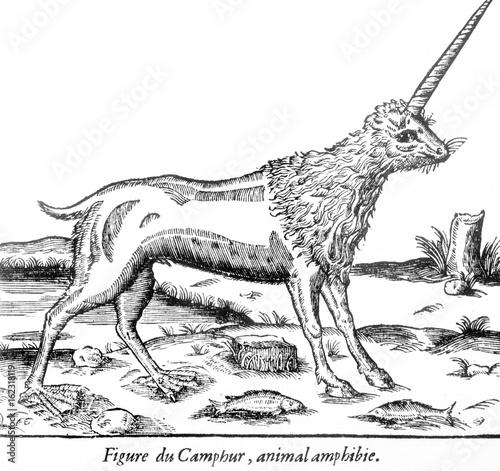 Valokuvatapetti Folklore - Unicorns. Date: circa 1570