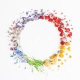 Fototapeta Tęcza - Flowers composition. Wreath made of rainbow flowers on white background. Flat lay, top view