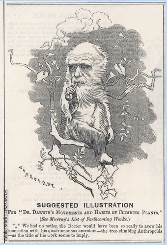 Photo Charles Darwin as a tree-climbing anthropoid. Date: 1875