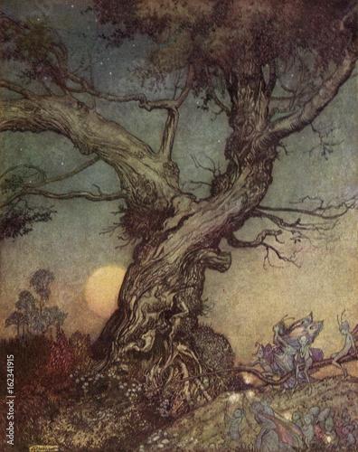 Fairy folk by an old gnarled tree - Arthur Rackham Wallpaper Mural