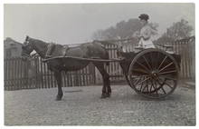Dairy Woman In Her Cart. Date:...