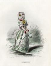 Grandville Eglantine. Date: 1847