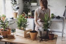 Florist Planting Plants In Workshop