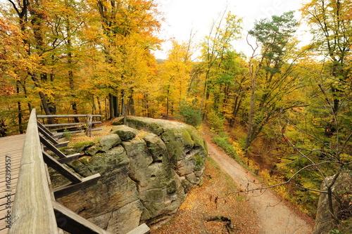 Keuken foto achterwand Begraafplaats Autumn road with leaves