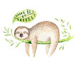 canvas print picture Baby animals sloth nursery isolated painting. Watercolor boho tropical drawing, child tropical illustration. cute palm tree leaves, tropic green texture, exotic flower. Aloha drawing