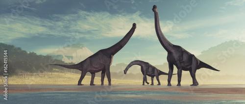 Photo  Family of dinosaurs