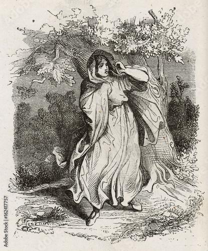 Folklore - Banshees. Date: 1863 Wallpaper Mural