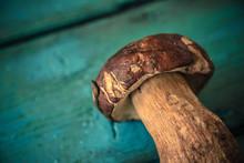 Bolete Mushroom On Wooden Tabl...