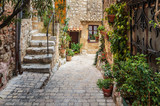 Fototapeta  - Narrow cobbled street with flowers in the old village Tourrettes-sur-Loup , France.