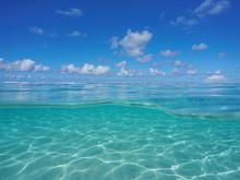 Seascape Over And Under Sea Su...