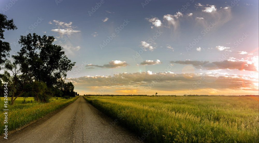 Fototapety, obrazy: Country Road