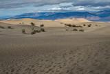 Mesquite Flat Sand Dunes, Death Valley National Park - 162461317