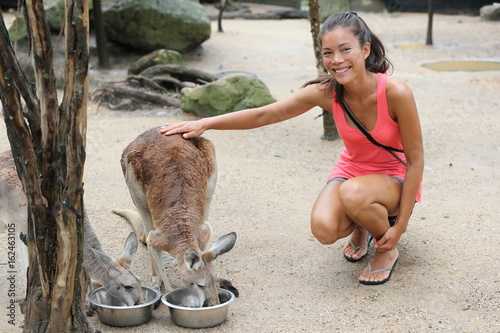 Kangaroos at zoo woman tourist petting kangaroo while feeding in wildlife nature reserve. Happy asian girl touching wild animals at zoo.