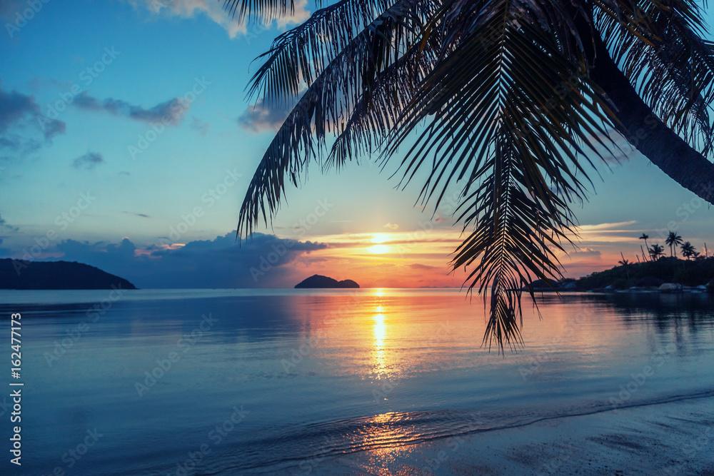 Fototapeta Magnificent beautiful bright tropical sunset, sun, palms, sandy beach