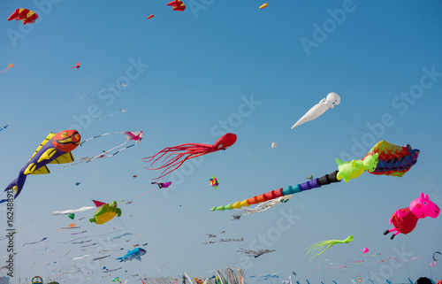 Kites in the sky Canvas Print