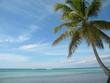 république dominicaine dominican repubic island